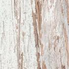 Distressed Wood Ravine